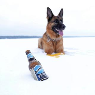 You don't need a groundhog to predict six more weeks of delicious Blue Moon. . . . 📸: @drakethegerman